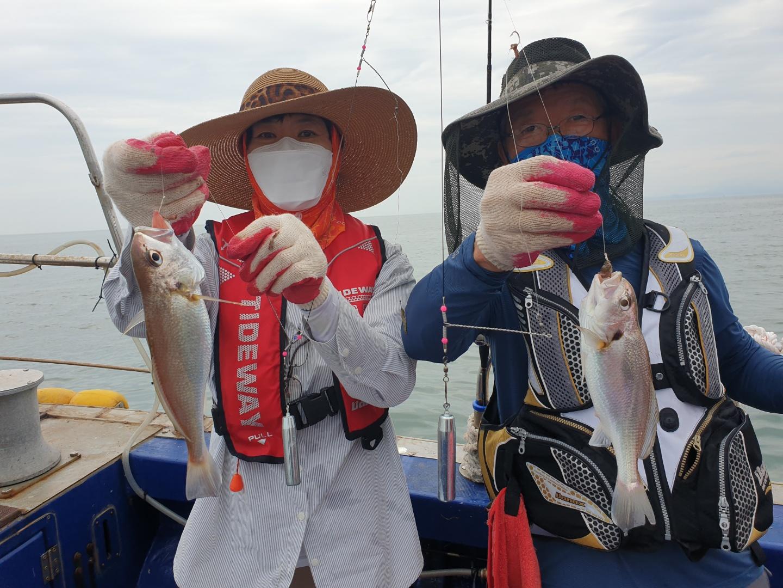 7월 3일 뉴해랑호 백조기 마지막 탐사 조황