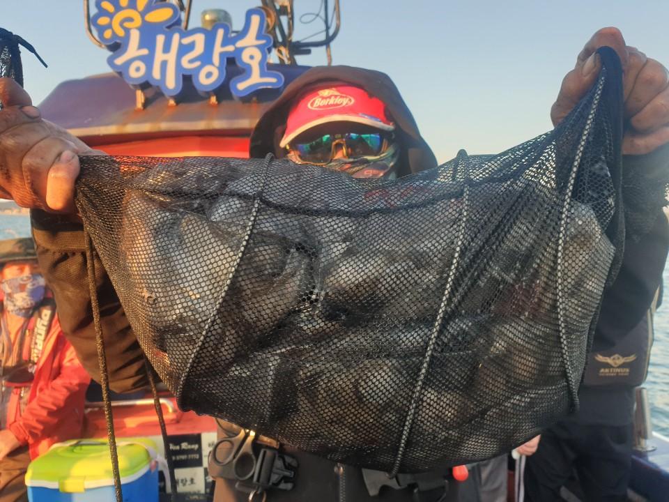 10월 23일 해랑호 쭈꾸미 조황